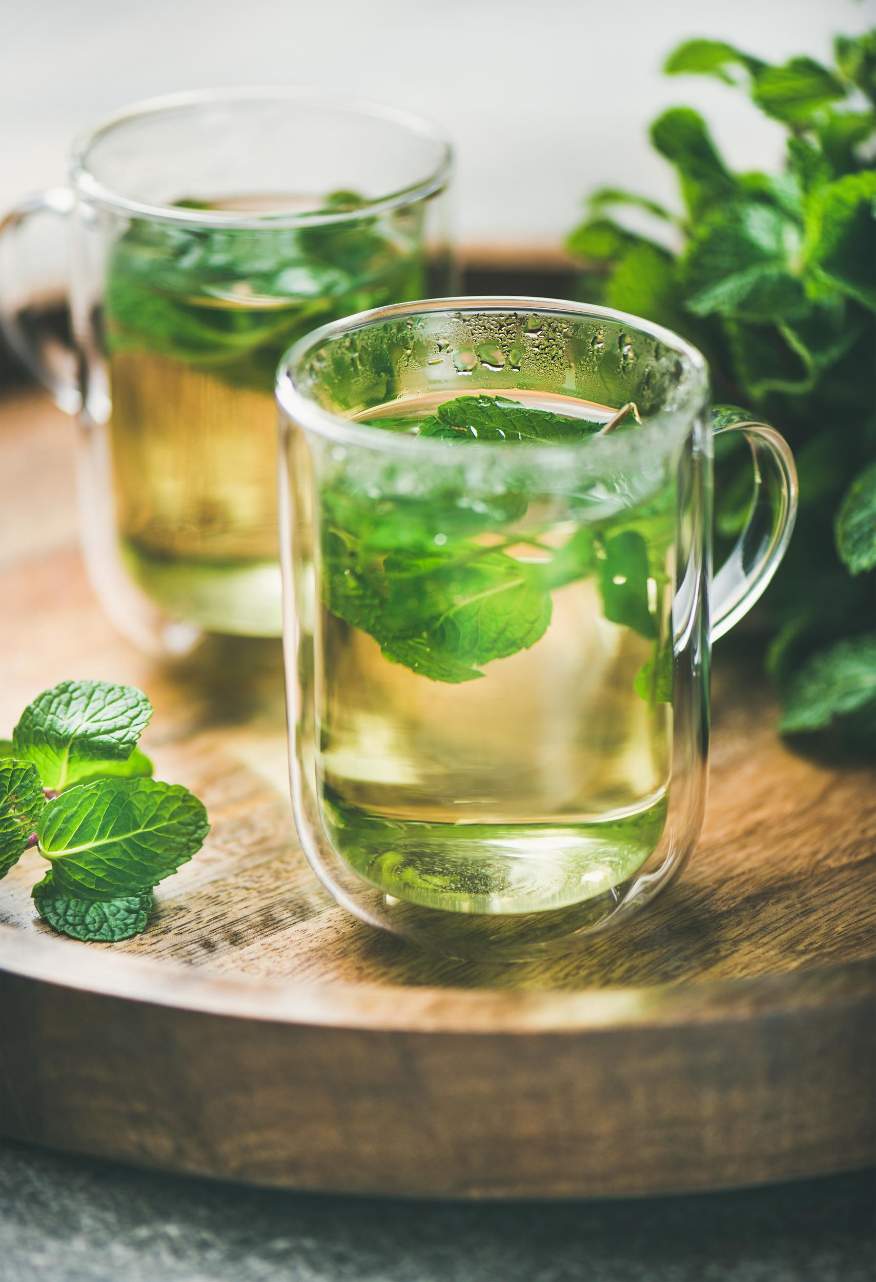 Hot herbal mint tea drink in glass mugs over wooden tray with fresh garden mint, selective focus