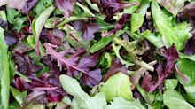 Salad days soon over: consumers throw away 40% of bagged leaves