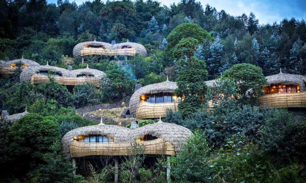 Las casas del árbol ecológicas que vuelven locos a los turistas en ...