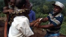 Video: Kerala man caught in a death grip by 10-foot long python, rescued