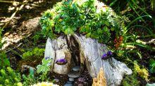 19 Enchanting DIY Fairy Garden Ideas for Your Backyard