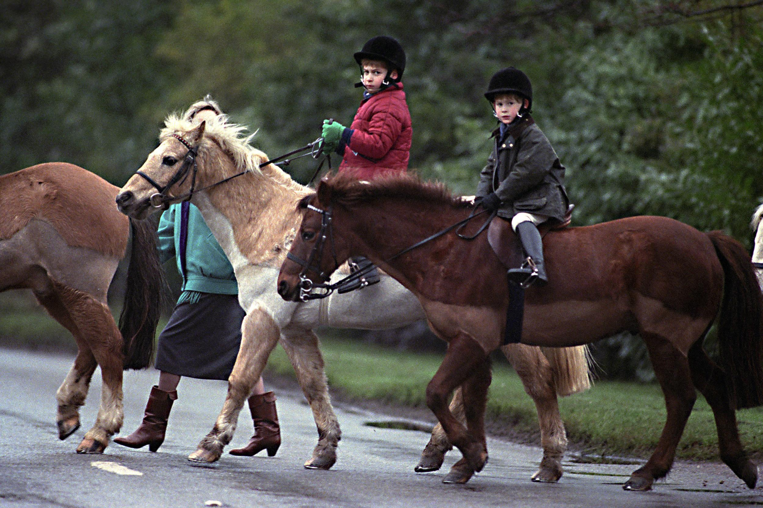 Prince William, And Prince Harry, On Ponies At Sandringham, In Norfolk, Accompanied By Their Nanny. (Photo by Julian Parker/UK Press via Getty Images)