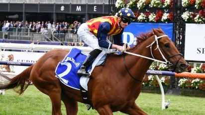 Nature Strip to bypass Newmarket Hcp