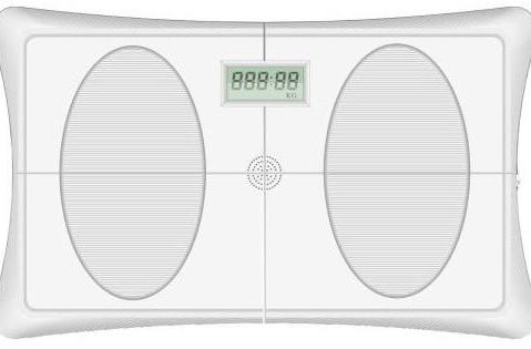 The Wii Fit balance board is cloned, magically sprouts an LCD display