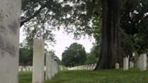 Old Guard Places Flags in Arlington Cemetery Ahead of Memorial Day