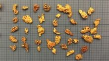 Maiden Trenching Confirms Potential Sources of Gold Nuggets at Mt. Roe
