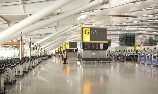 When you land at Heathrow Terminal Galaxy S5, you'll know who to blame