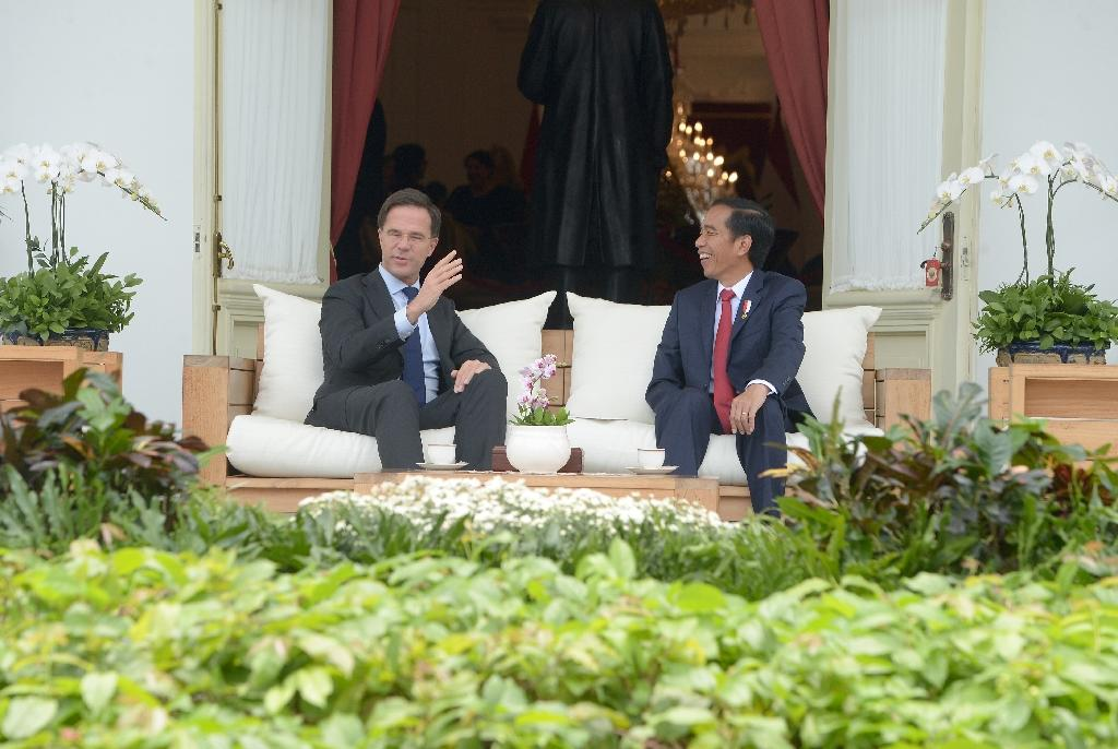 Netherland's Prime Minister Mark Rutte chats to to Indonesian President Joko Widodo at the presidential palace in Jakarta on November 23, 2016 (AFP Photo/Adek Berry)