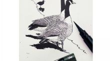 10 best sketching materials
