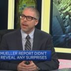 US voters appear unmoved by the Mueller report: Professor
