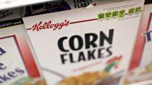 Die Lebensmittel-Giganten: Was Sie über Kellogg's wissen müssen