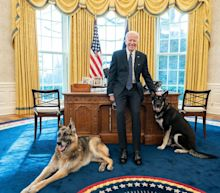 Bidens pay tribute to 'cherished companion' after dog Champ dies