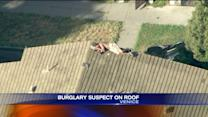 Burglary Suspect Climbs to Rooftop in Venice