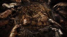 """Pour sa série """"Hommes et arbres"""", le photographe Nicolas Henry pose ses objectifs au cœur de la forêt de Moulière près de Poitiers"""