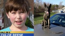 Police praise K-9 for finding children lost in woods