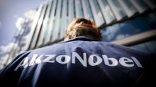 AkzoNobel seeks to keep shareholders sweet after profit warning