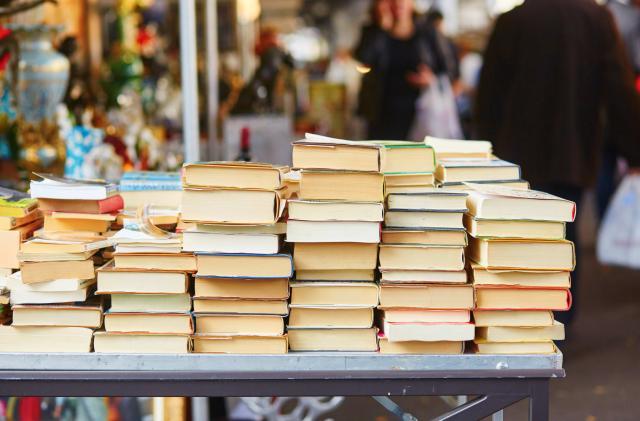 Google AI experiment has you talking to books