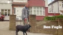 Ben Fogle makes HILARIOUS entrance on Britain's Favourite Dogs