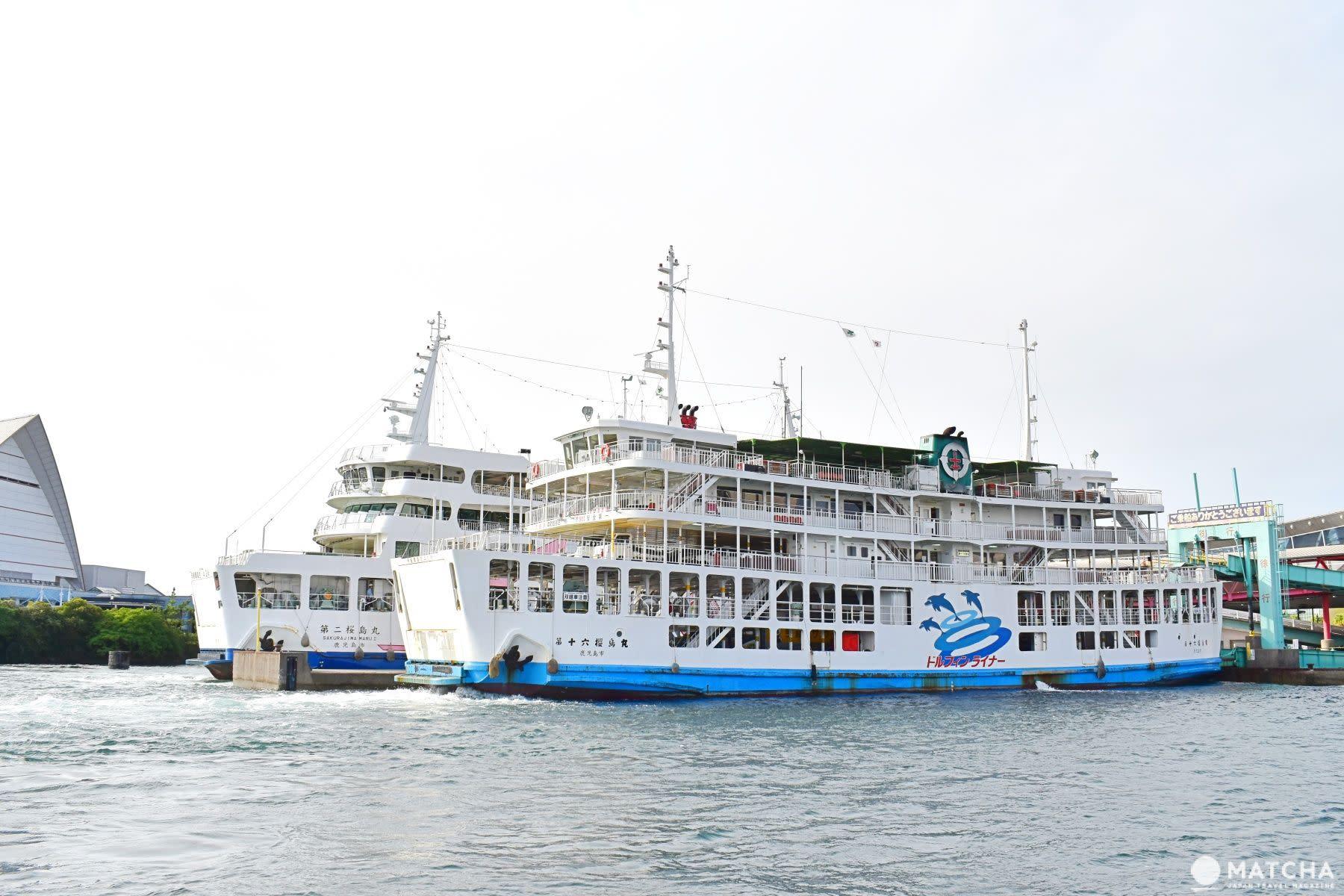 鹿兒島イルカ