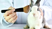 California Passes Cruelty-Free Cosmetics Act to Ban the Sale of Animal-Tested Beauty Products [Updated]