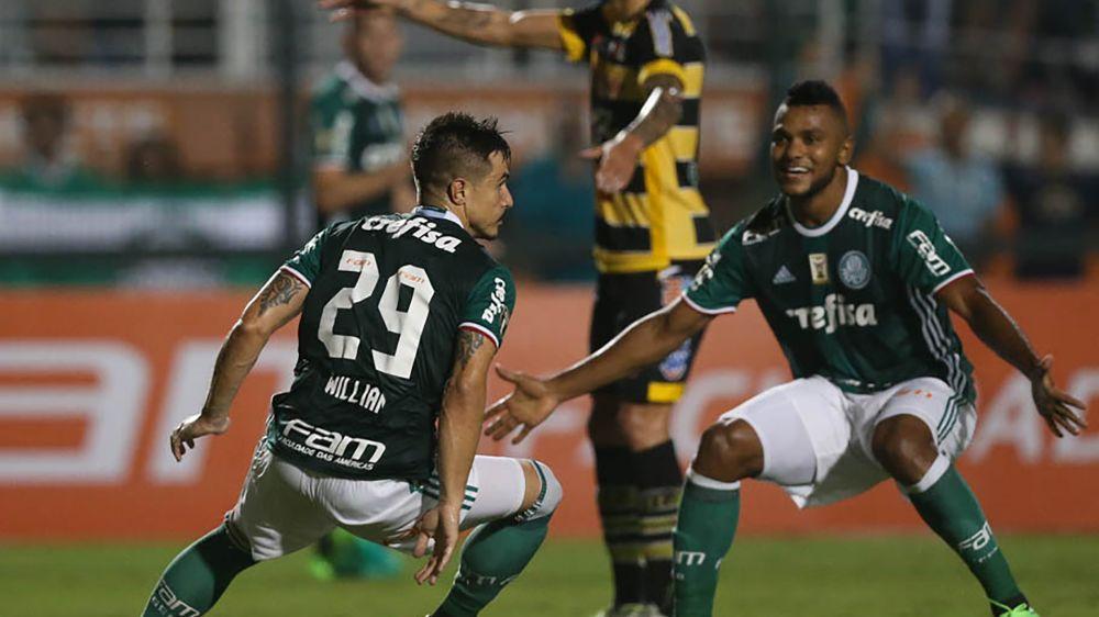 Palmeiras vive dúvida entre Borja e Willian; veja estatísticas e compare