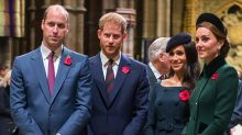 Harry and Meghan's 'great divide' with the royal family 'widening'