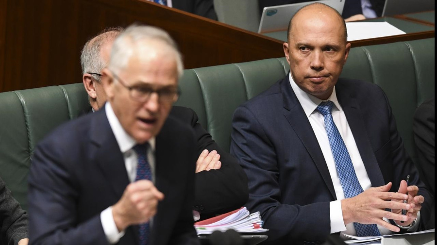 Turnbull rejects mass resignations in Liberal leadership spill aftermath