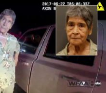 Grandmother, 81, Sparks Police Chase After Driving Wrong Way While on Coffee Run