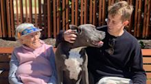 The heartwarming story behind this man's photo with his grandmother and dog