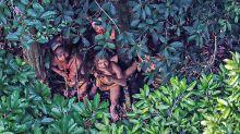 Sertanista diz temer uso de morte de colega contra índios isolados na Amazônia: 'acidente de trabalho'