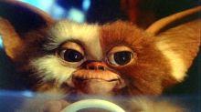The Gremlins reboot is happening, says Chris Columbus
