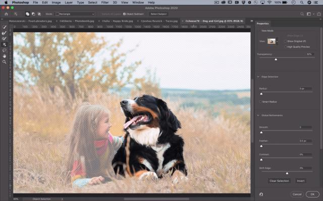 Photoshop's latest AI-powered tool makes quick work of selections