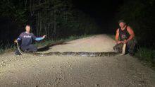 US-Jäger stellen Rekord mit Fang von knapp sechs Meter langer Python auf