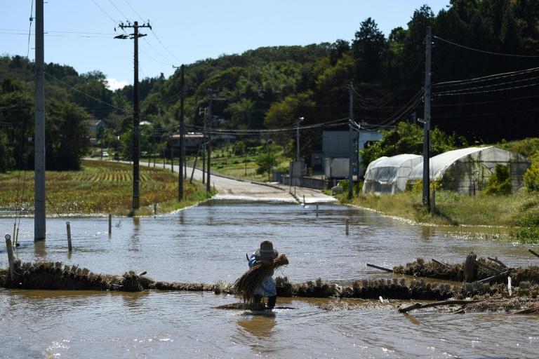 Hagibis wrought widespread flooding (AFP Photo/CHARLY TRIBALLEAU)