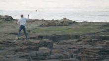 Empörung über Video: Tierquäler werfen mit Steinen auf Robben