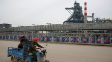 Ten cities in China's Hebei issue smog alerts, including top steel producer