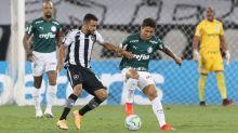 Palmeiras perde chance de alcançar maior invencibilidade do século