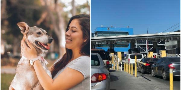 Qué necesita tu mascota para cruzar de Tijuana a San Diego?