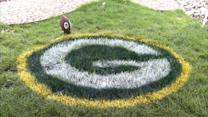 This Lawn Painter Takes Gridiron to the Garden