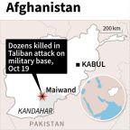 43 Afghan soldiers killed in suicide attack on military base: officials