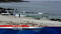 Local reality-television star crashes car in Pacific Ocean