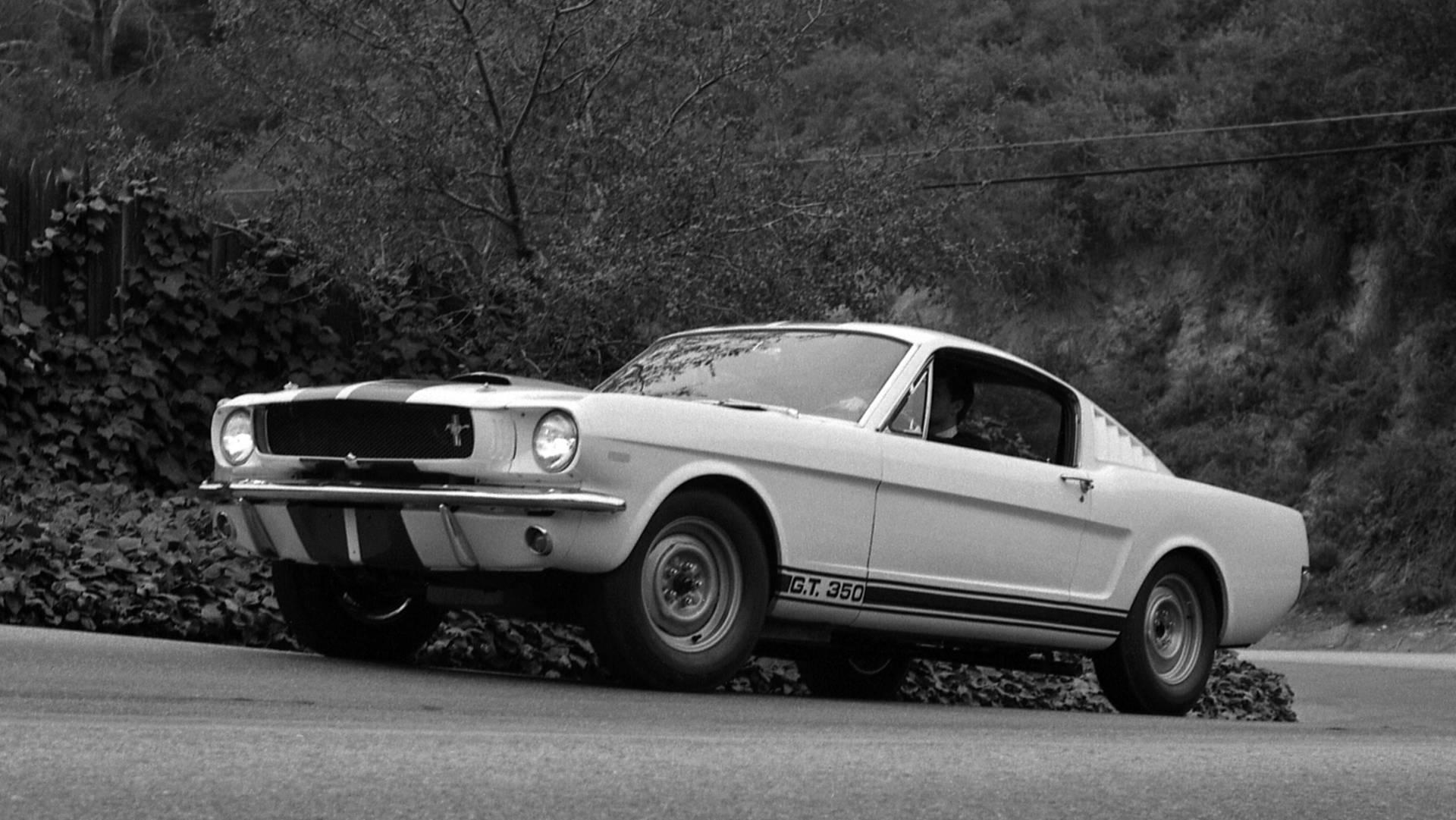 <p>The original Mustang wasn't much of a performance car, even by 1960's standards. But in 1965, Carroll Shelby created the first true go-fast variant in the form of the Shelby GT350. The original prototype didn't stray much from the factory formula; an extra 35 horses were added to the 289 cid V8, and steering speed was improved by 14 percent. Shelby rolled out a limited run of 513 Shelby Mustangs in 1965, but it wasn't until 1966 that the performance-oriented pony cars got the recognition they deserved.</p>
