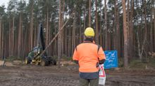 Court halts forest clearing for Tesla's Berlin plant