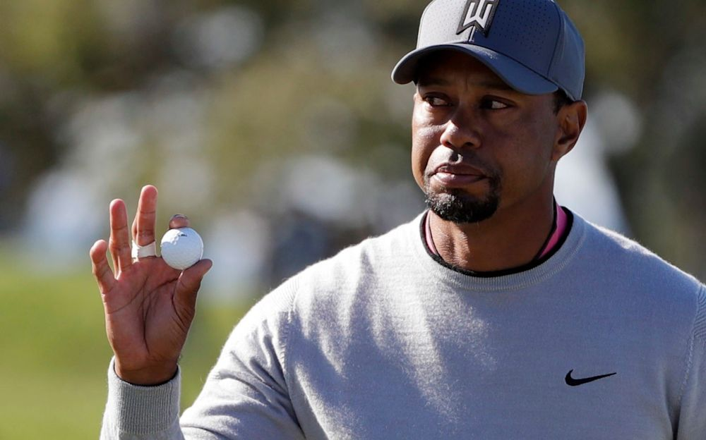 Tiger Woods has had surgery to alleviate pain in his back and leg - AP