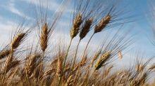 Contratto secondo livello per De Matteis Agroalimentare S.p.A.