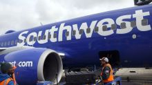 Southwest Reviews Support Animal Policy After Dog Bites Child