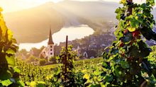 A river cruise to discover the curious history behind Germany's 'medicinal' wine