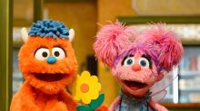 Sesame Street Is 50 Years Old! Here, 10 Muppets Who Tackled Tough Topics Through the Years