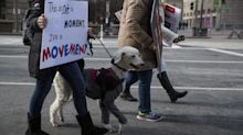 Some Wonderful Dogs Are Also Marching For Gun Reform