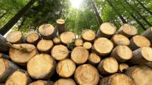 3 Top Lumber Stocks to Consider Buying in 2019